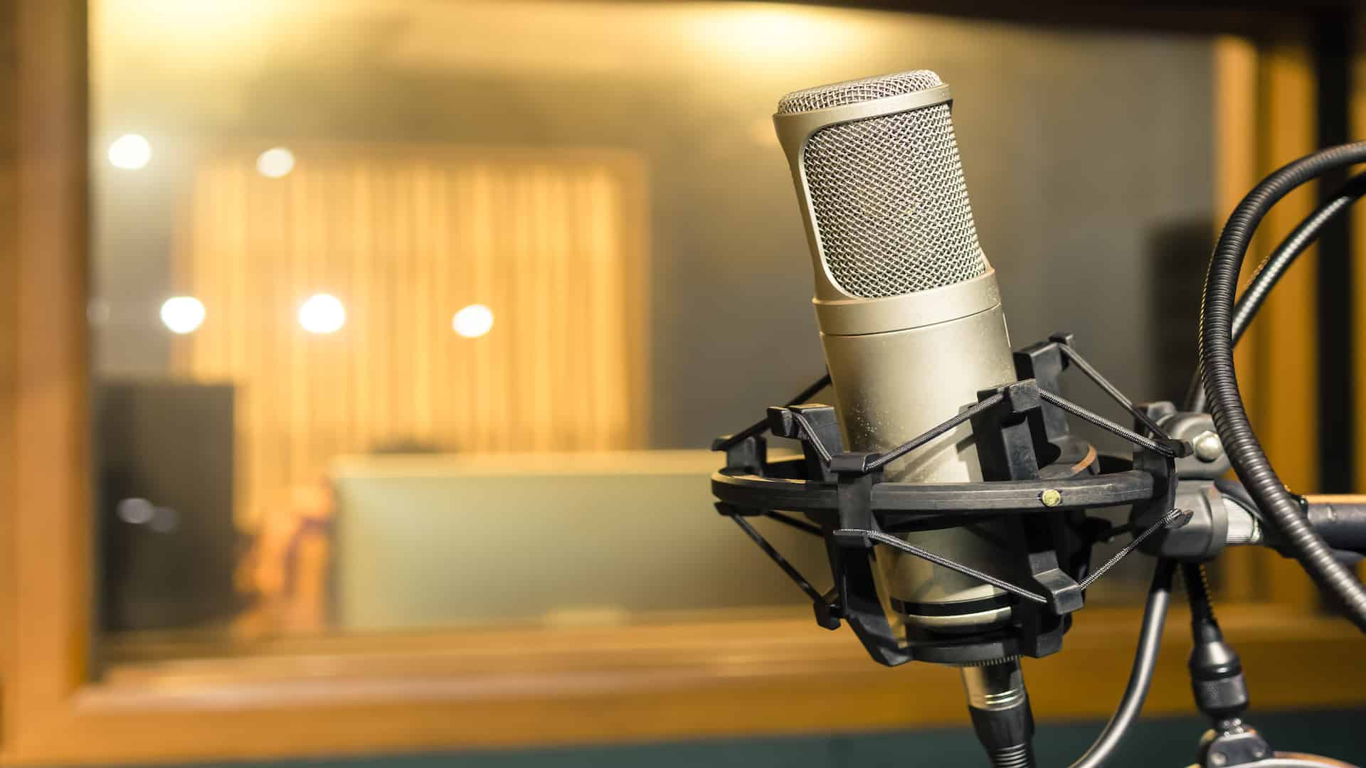 Best Condenser Microphone 2020: Shopping Guide & Review