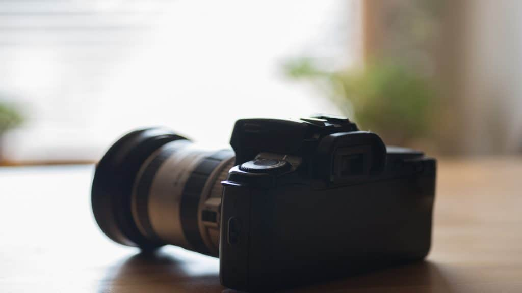 Best DSLR Camera 2020: Shopping Guide & Review